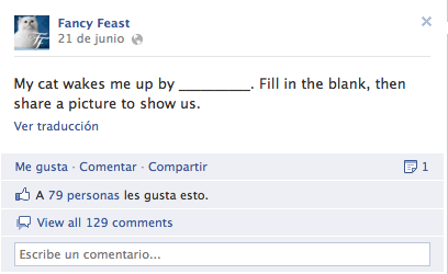 Fancy Feast fan page